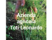 produttore Azienda agricola Toti Leonardo
